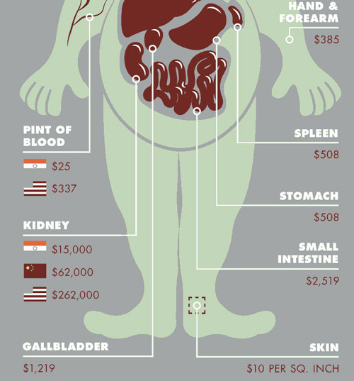organs on the black market Selling your organs: should it be legal sell corneas on the black market for money a market system – black or legal market for organ.