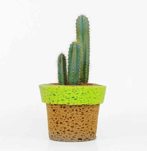 Stefano-Claudio-Bison-InVaso-sponge-planter-vase