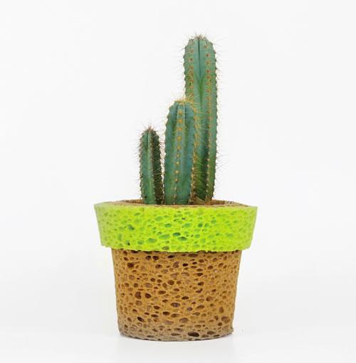 Stefano-Claudio-Bison-InVaso-sponge-planter-vase