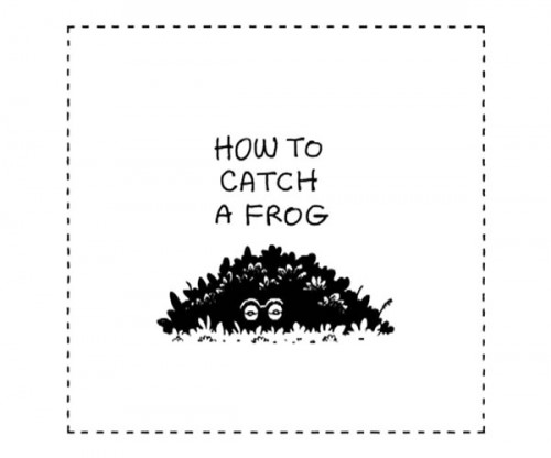 how-to-catch-a-frog