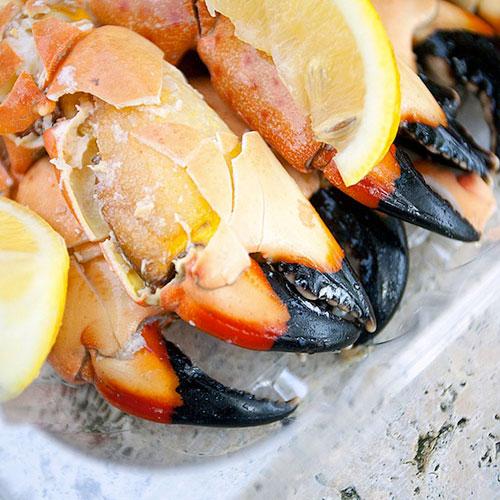 joes-stone-crab-claws-miami-beach