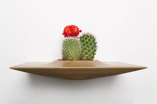 plant-pods