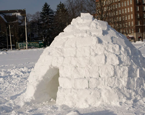 urban-igloo