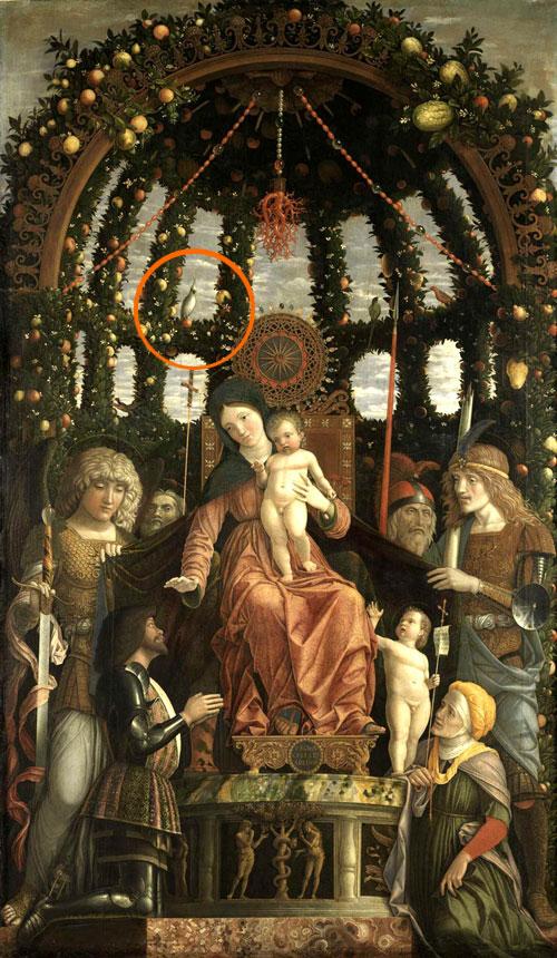 australian-cockatoo-1496-italian-renaissance-painting