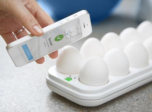 egg-minder