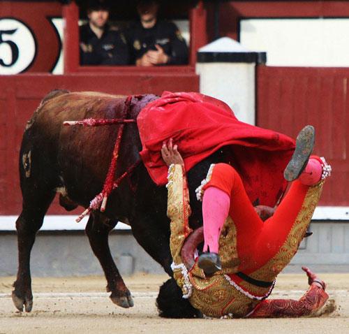 matadors-gored-madrid-04