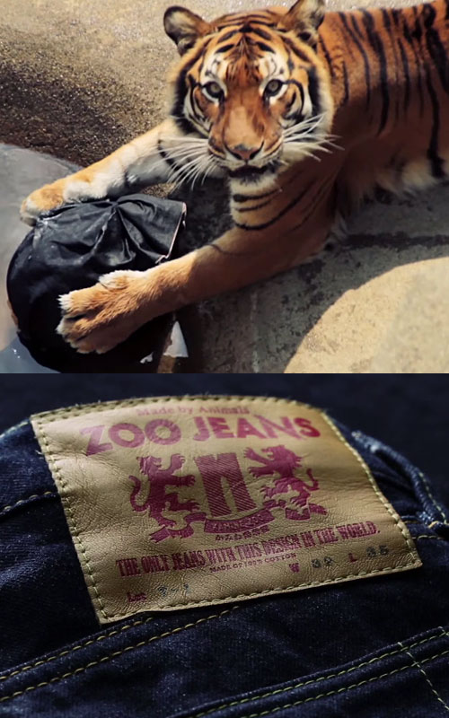 zoo-jeans
