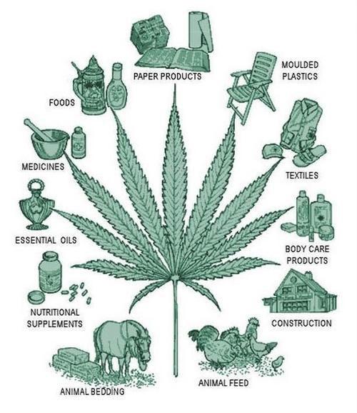marijuana-uses