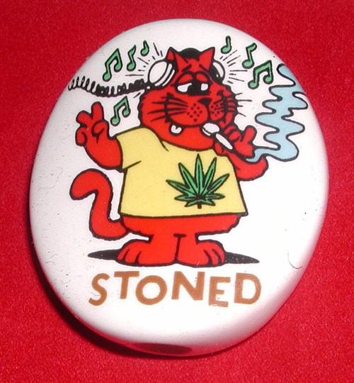 stoned-cat
