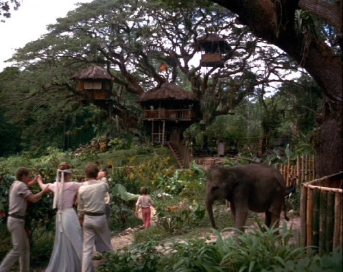 swiss family robinson tree neatorama